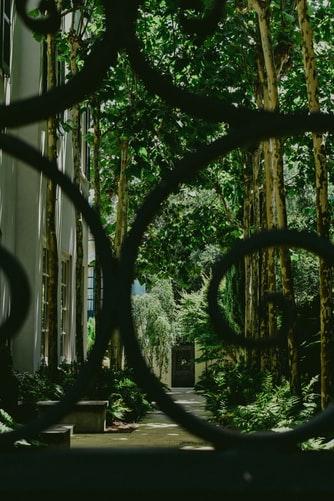 A Modern Secret Garden Inspired Invitation